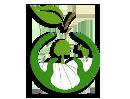 специалност ИКОНОМИСТ - Земеделско стопанство